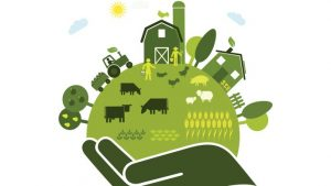 sustainable-food-system-696x392